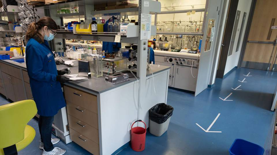 A researcher works in a lab