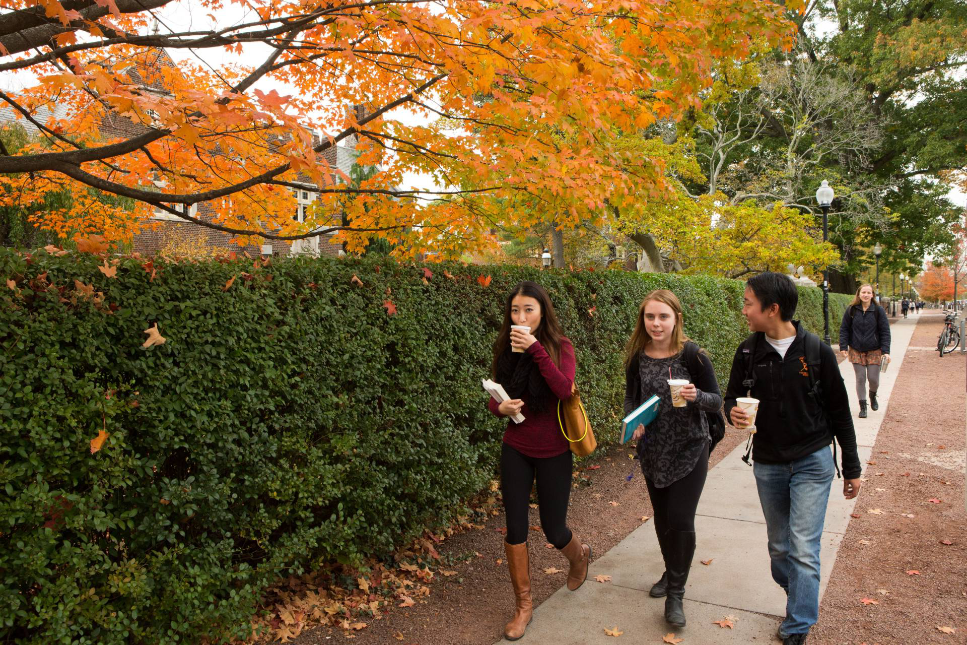 Photo of students walking on campus in fall