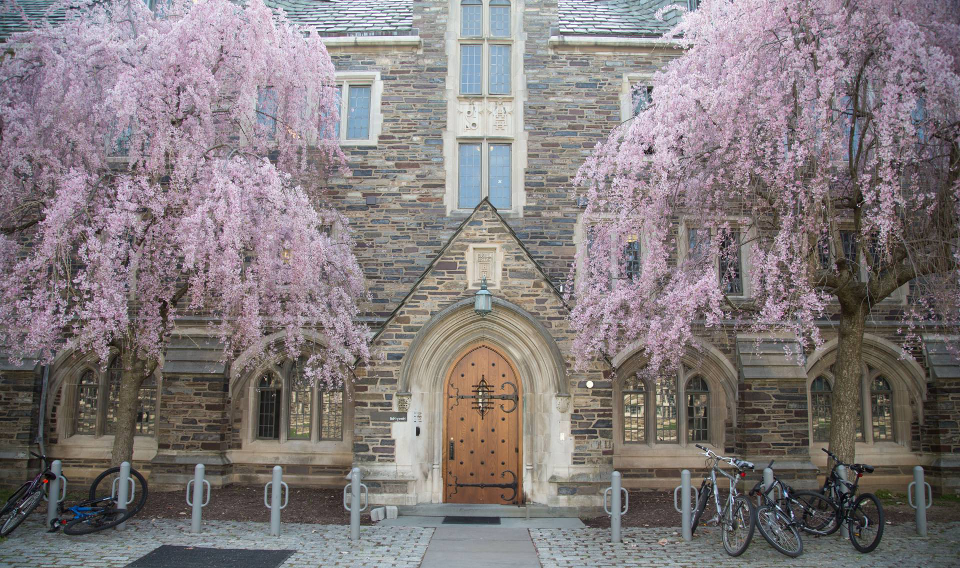 Pink buds bloom on trees outside an entry to Henry Hall dormit要么y.